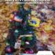 Adventskalender – ab Dezember nur im Winzerla Fitness